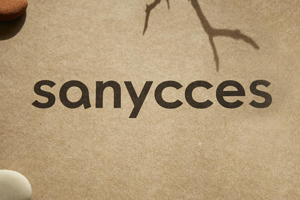 New Sanycces Identity